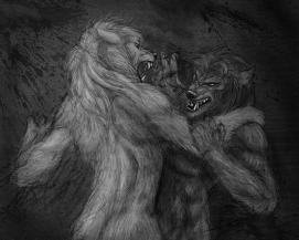 werewolf_fight_by_viergacht-d7h51vr