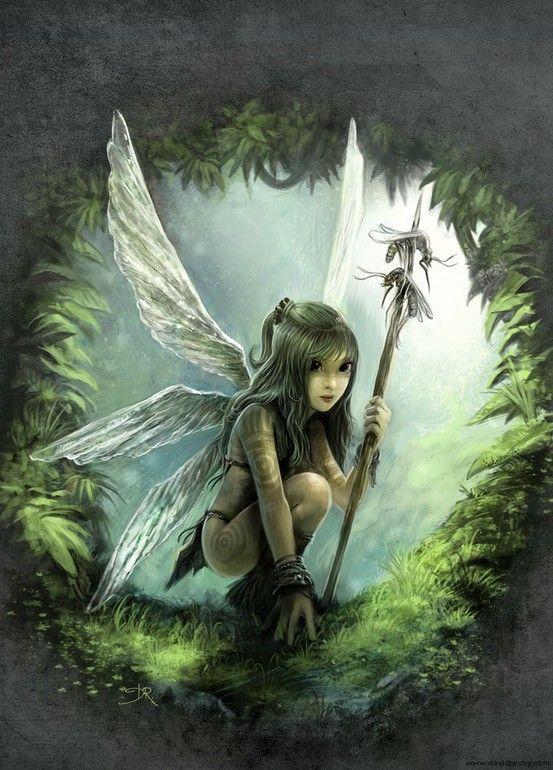 fairywarrior